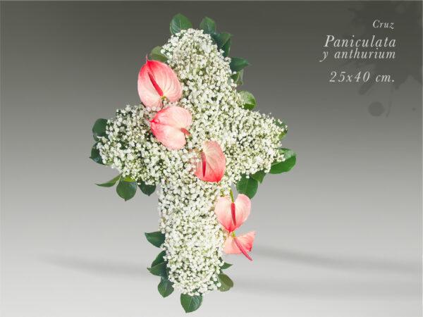 cruz de paniculata y anthurium